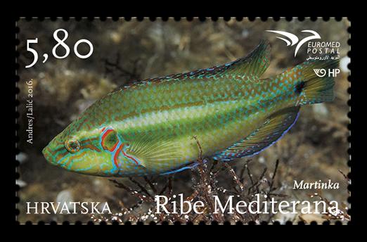 克罗地亚7月7日发行Euromed2016主题地中海的鱼邮票