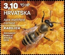 克罗地亚3月21日发行克罗地亚动物-灰色蜜蜂邮票
